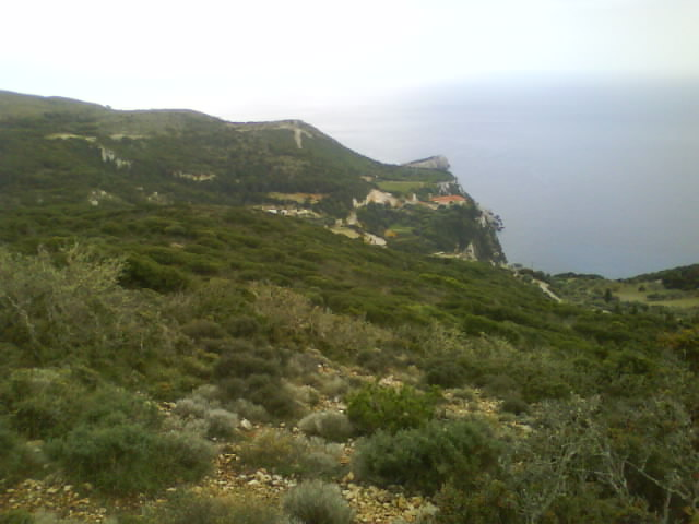 Κηπουρια  2012 (9)